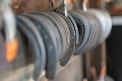 Horse-Shoe Hang-up